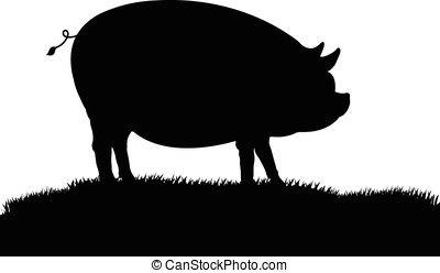 豬, 黑色半面畫像