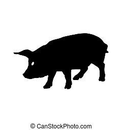 豬, silhouette., 矢量, 插圖