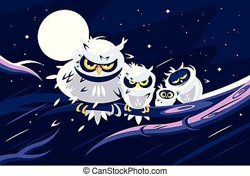 貓頭鷹, 坐, 上, 分支, 前面, 充分, moon.