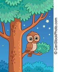貓頭鷹, 夜晚, 樹, branch., 坐