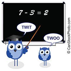 貓頭鷹, 老師, 由于, 小學生