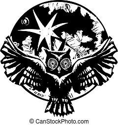 貓頭鷹, 飛行, 月亮