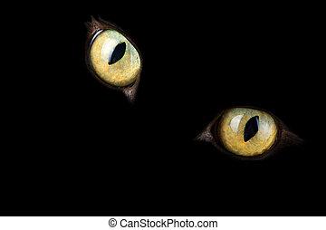 貓, 眼睛, 發光, 在暗處