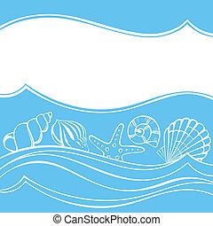 貝殻, カード