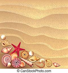 貝殻, 砂, ベクトル, 背景