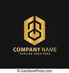 財産, 金, ベクトル, 六角形, 会社, 現代, 実質, 抽象的, ロゴ, 3d, デザイン, イラスト