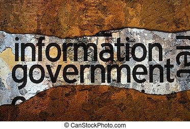 資訊, 政府