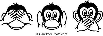 賢い, 3, 猿