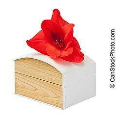 贈り物の箱, ∥で∥, 花, gladiolus.