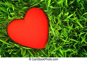 赤い心臓, 上に, 緑の草, 背景