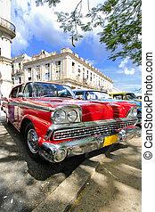 赤い自動車, 下に, 木の枝, 中に, ハバナ, キューバ