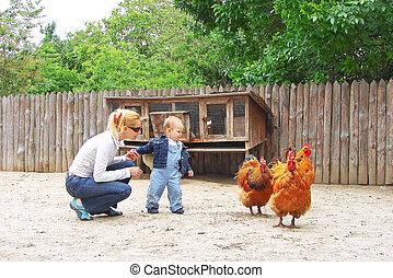 赤ん坊, お母さん, 動物園
