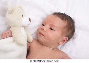 赤ん坊, テディ, 新生