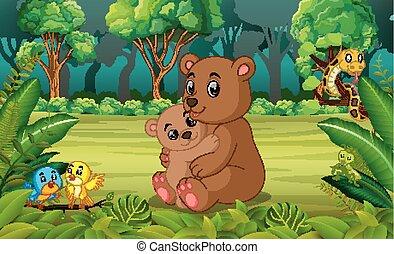 赤ん坊, 森林, 熊