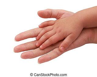 赤ん坊, 概念, 愛, 上に, 隔離された, 手, バックグラウンド。, やし, 女性, 小さい, 白, 信頼
