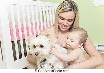 赤ん坊, 遊び, 犬, 寝室