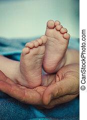 赤ん坊, palms., 家族, 概念, イメージ, 父, フィート, 概念, 保護, 母性, child., grendmather, 下に, grendfather, ded, ∥あるいは∥, hands., 幸せ