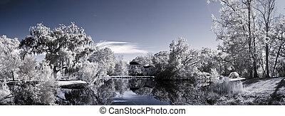 赤外線, 風景, の, 公園用地, そして, 池