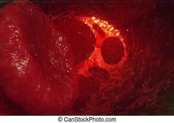 赤血細胞, 中に, 静脈, ∥あるいは∥, 動脈, 流れ, 中, 中, a, 生きている 有機体, 3d, イラスト