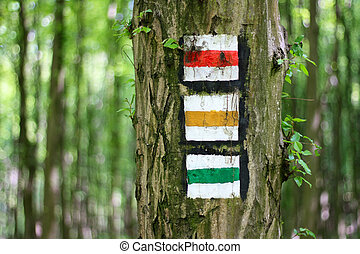 赤, 緑, 観光客, 黄色の符号