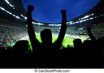 足球, 足球, 迷, 支持, 他們, 隊, 以及, 慶祝