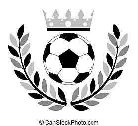 足球, ball.