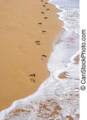 足跡, 浜の 砂
