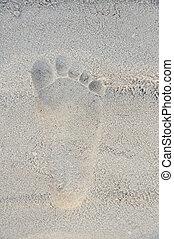 足跡, 浜, 砂, 人間, タイ