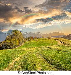 路径, 在上, 山坡, 草地, 在中, 山, 在, 日出