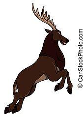 跳躍, 鹿