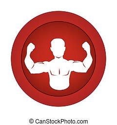 身体, 侧面影象, 圆, 一半, 肌肉, 边界, 红, 人