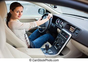 車の女性, 運転