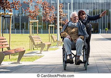 車椅子, 退職者, モデル