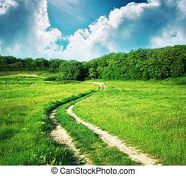 車線, 中に, 牧草地