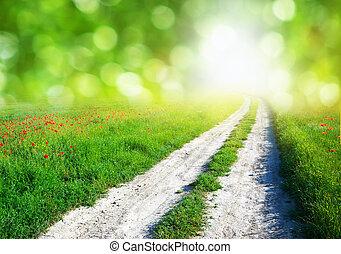 車線, 中に, 緑の採草地