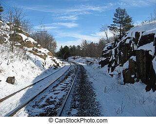 軌道に沿って進む, 列車