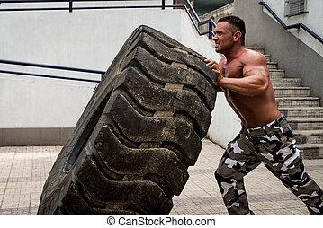 輪胎, 适合, 測驗, 用指輕彈, 肌肉, 產生雜種, 參與, 人