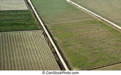 農作物栽培, 中に, 春, 航空写真