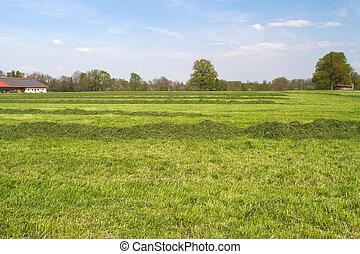 農場陸地, 在, bavaria