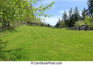 農場陸地, 由于, 柵欄, 以及, 綠色, 春天, 風景。