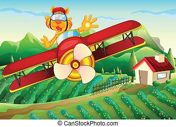 農場, ライオン, 飛行, の上, 飛行機