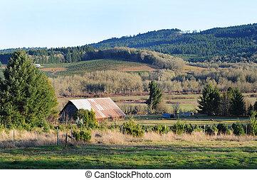 農場, 国, 田園, 納屋