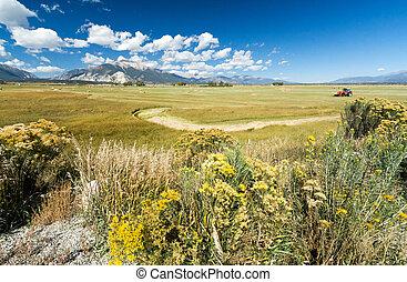 農場, 山の景色, フィールド