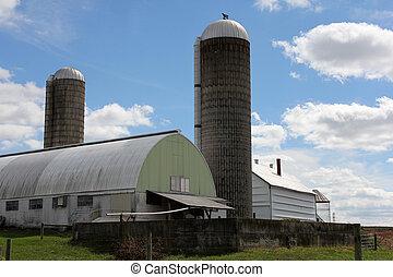 農場, 搾乳場