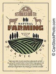 農場, 有機体である, 農業, レトロ, ポスター