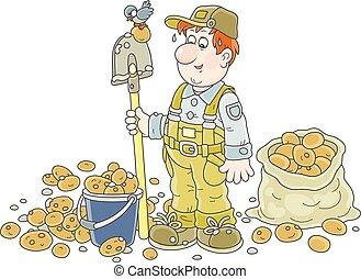 農夫, 彼の, 収穫, ポテト