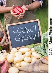 農夫, 販売, 有機体である, veg, ∥において∥, 市場