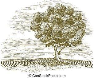 農村, 樹, 木刻