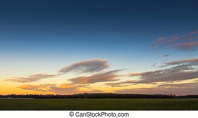 農村, 禿頭, 樹, 多雲, sky.