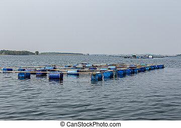 農業, モンテネグロ, 水産養殖, タイ, アジア